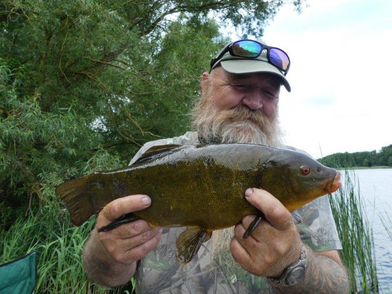 Friedfische / Coarse Fish
